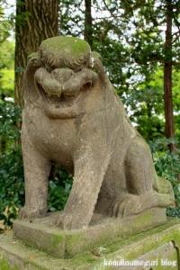 八幡神社(さいたま市西区二ツ宮)19