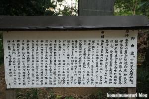 大倭神社(さいたま市西区三橋)7