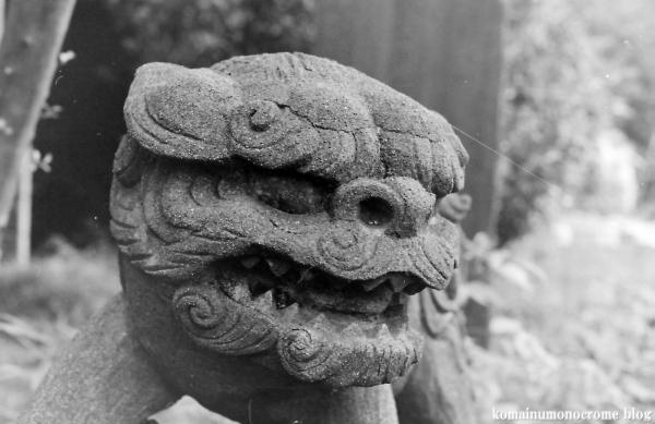 上ノ氷川神社(志木市上宗岡)2