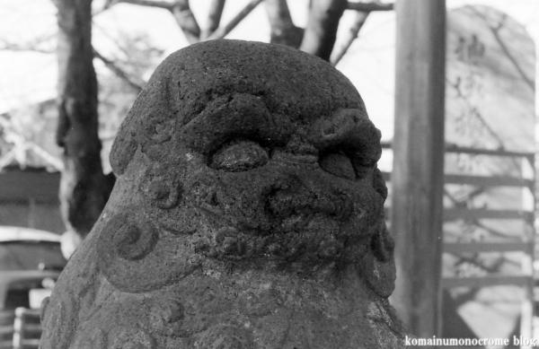 氷川神社(川口市青木)4