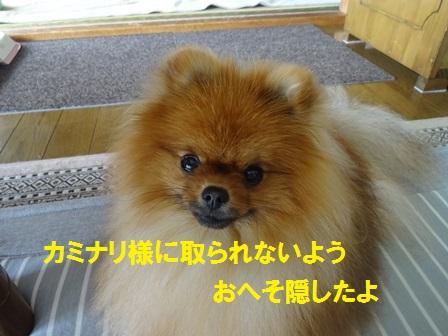 20160802101429c8e.jpg
