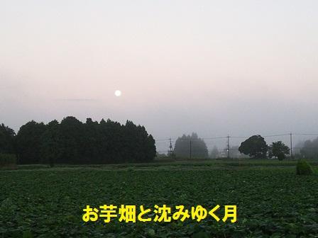 2016081911320509a.jpg
