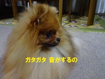 20160825121327c48.jpg