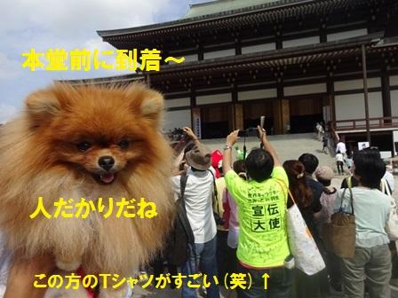 20160920111838bda.jpg