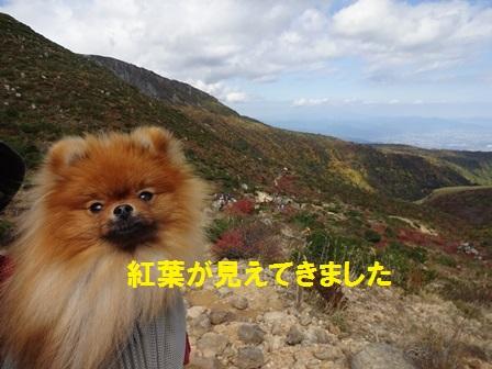 2016102114190705a.jpg