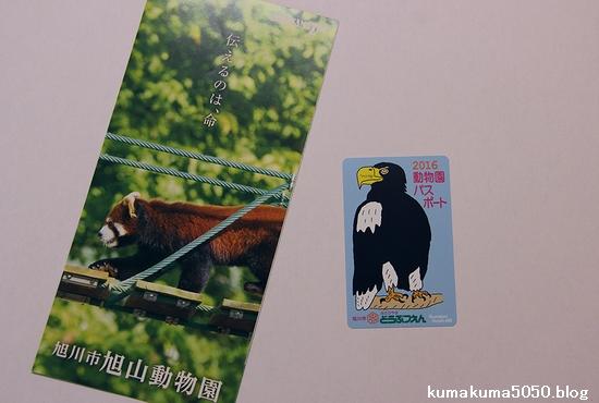 旭山動物園_1