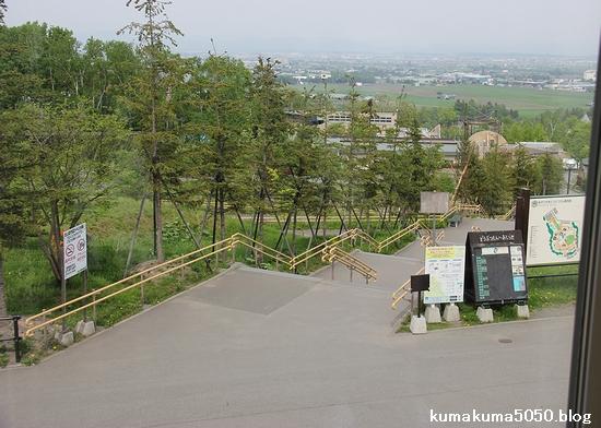 旭山動物園_5