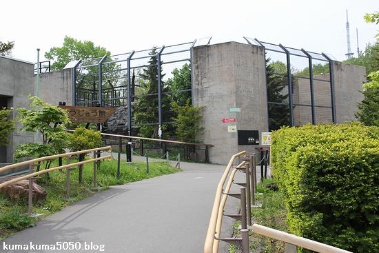 旭山動物園_6