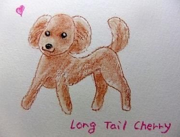 Long Tail Cherry