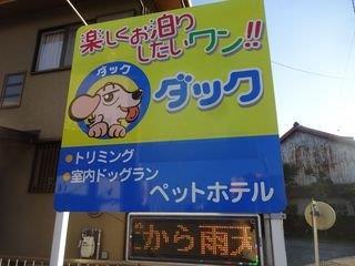 moblog_a82e35df.jpg