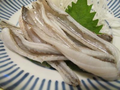 タチウオの炙り刺身アップ1