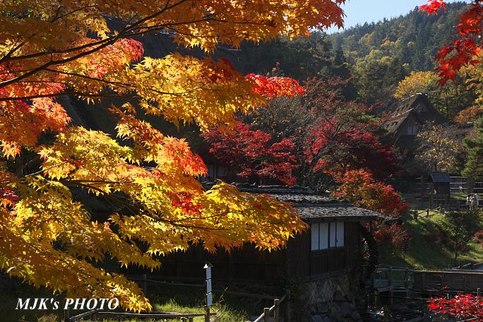 hidanosato6465.jpg