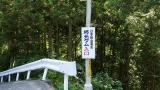 20160603稲子065
