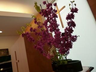 花と講壇22