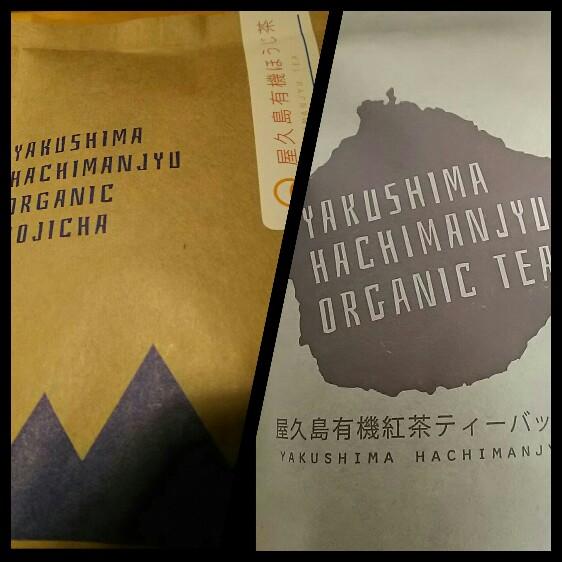 屋久島のお茶