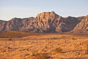 砂漠のイメージショットその2