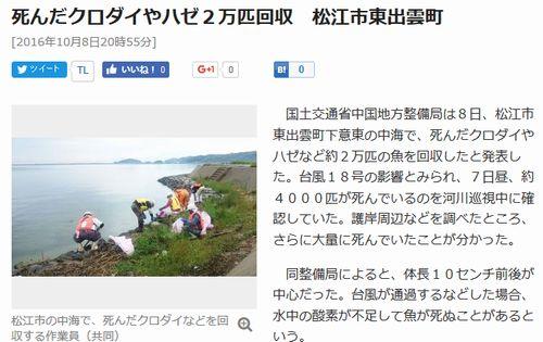 島根県松江市の中海の護岸周辺を調べたところ、打ち寄せられてたクロダイやハゼは更に大量の「約2万匹」だったことが判明し、回収へ