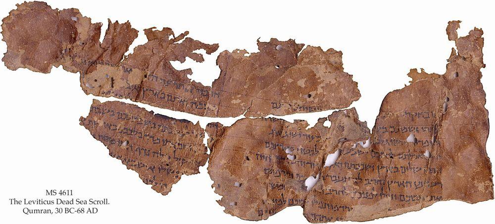 【死海文書】これまでに見つかっていない「ネヘミヤ記」を含む断片発見か…イスラエル考古学庁「未発見の断片は他にも多数あるが盗人が見つけているだろう」