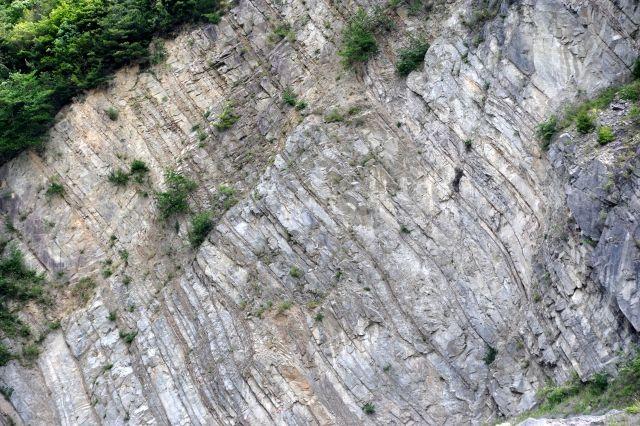 【鳥取地震】気象庁「今回のような地震は活断層がない所でも起きるから」