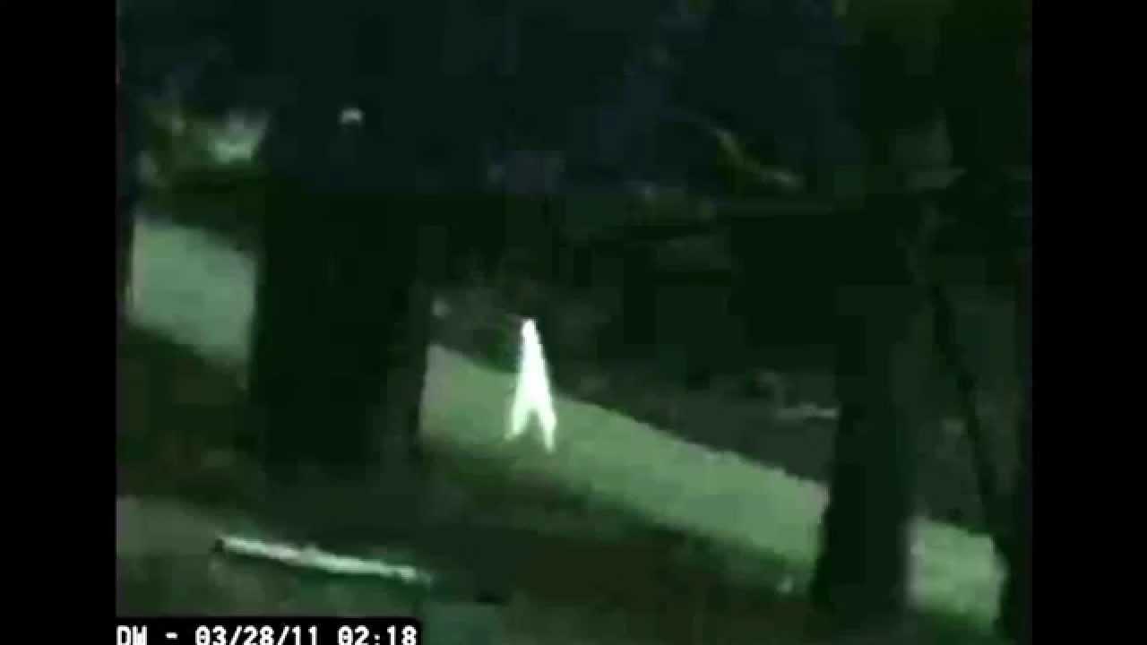 【UMA】アメリカで目撃される棒のような謎の生物「ナイトクローラー」 その正体は白いシーツを被った「竹馬」なのか?