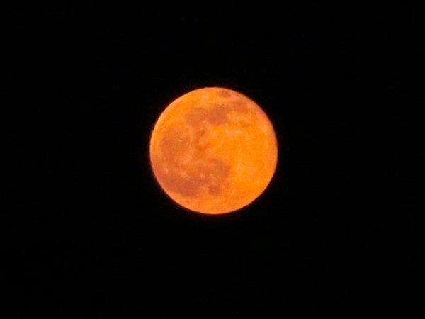 【満月】今夜は月が「真っ赤」…窓を開けてみませんか?