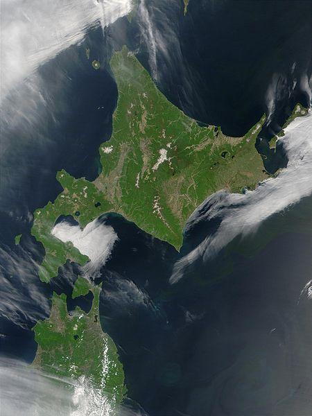 北海道民「ゴキブリって実在するの?都市伝説じゃない?見たことない」