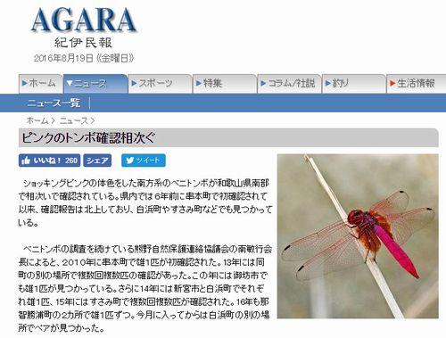 【熱帯・亜熱帯化】和歌山県南部でショッキングピンクの色をした「トンボ」が相次いで確認される
