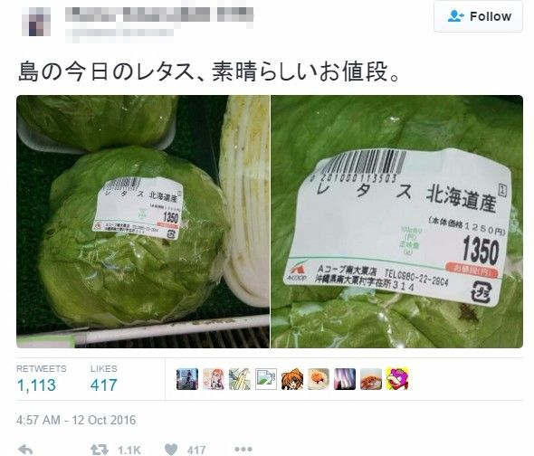 【天気】全国的な天候不順による野菜高騰…沖縄でレタス1玉が「1350円」で売られていたことが話題に