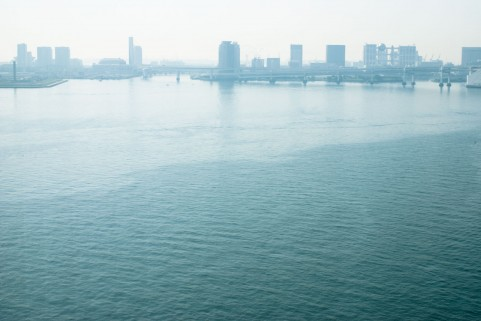【突然変異】2年前から東京で「奇形生物」が増加?カエルやトンボ…放射性物質が地中に蓄積しているのが原因か