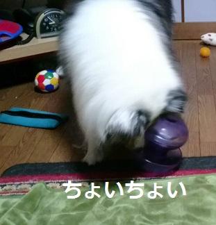 MOV_8541_000005.jpg