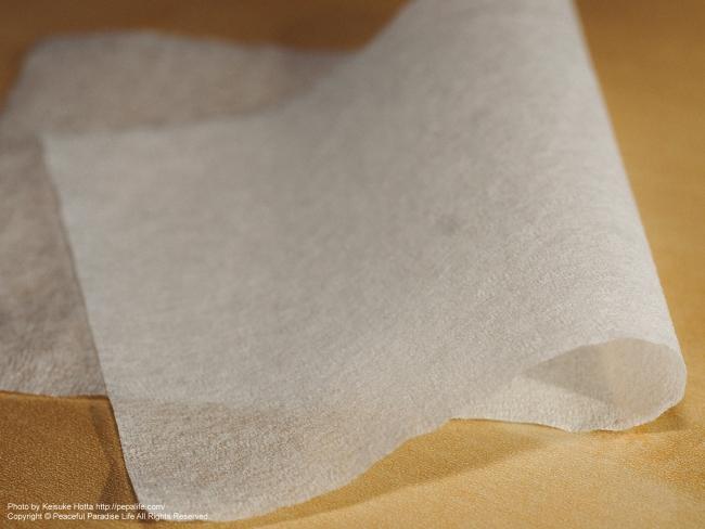 Nikon シルボン紙