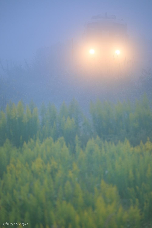秋霧に包まれながら