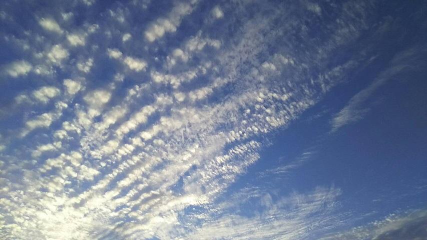 10月15日の夕方~の空は天界の白鳥が翼を広げたような、きれいな青と白の空でした1