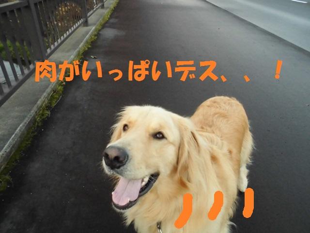 CIMG3536_P.jpg