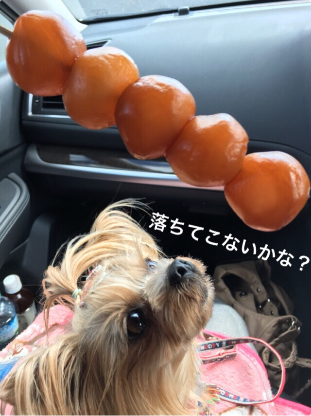 fc2blog_20161102102405b4c.jpg