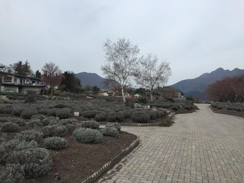 八木崎公園5