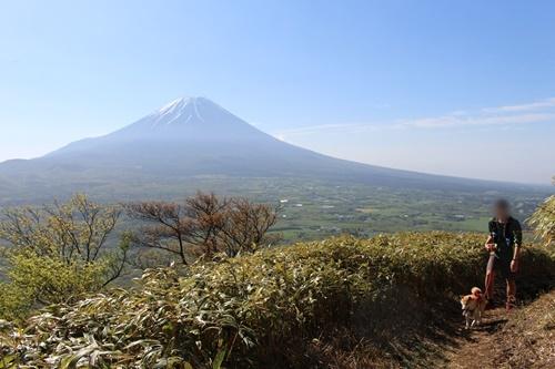 新緑&富士山見ながら竜ヶ岳登山①(本栖湖湖畔駐車場~山頂)