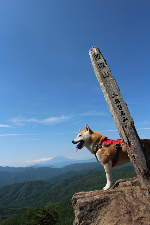 笠取山登山①(作場平口→山頂)