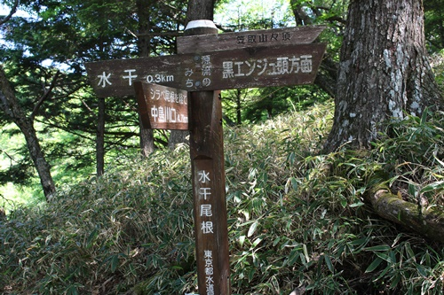 笠取山下山10
