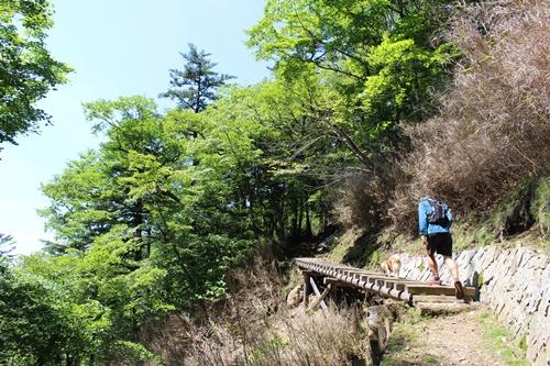 笠取山下山19