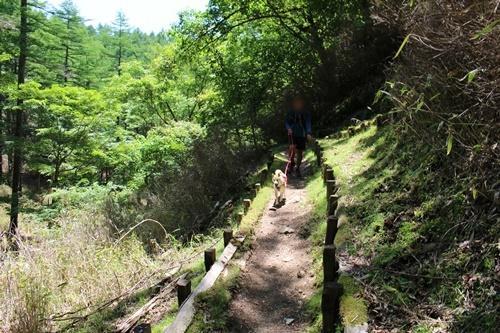笠取山下山28