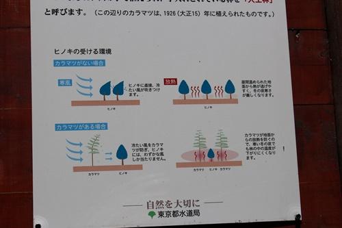 笠取山下山38