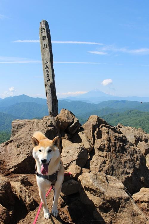 笠取山登山②(山頂→下山)
