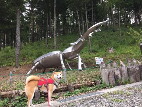 穂坂自然公園を散策