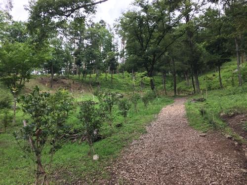 穂坂自然公園4