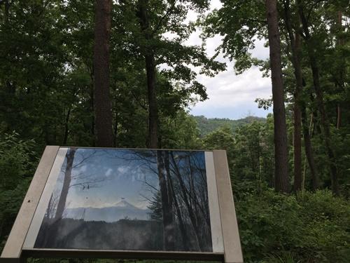 穂坂自然公園20