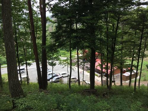 穂坂自然公園6