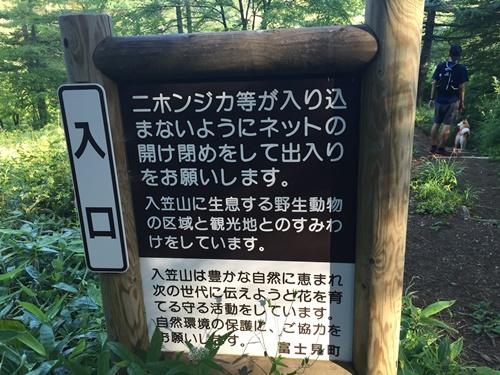 入笠山10