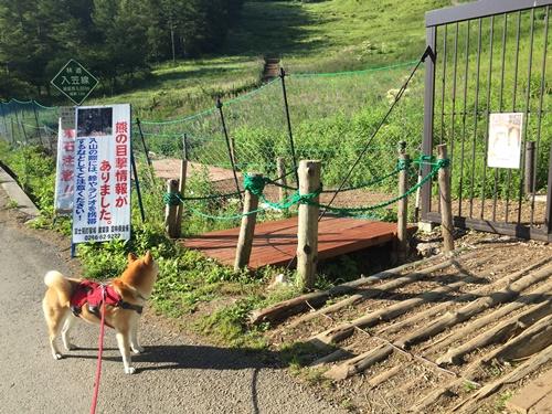 入笠山20