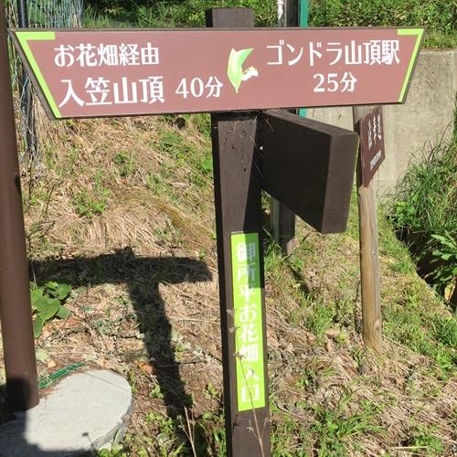 入笠山21